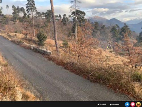 Rally Montecarlo / PS14 La Cabanette – Col de Braus