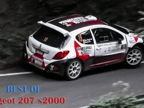 Peugeot 207 S2000 Tribute: PURE ENGINE SOUND!!