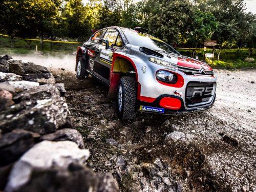 WRC2: LA CONFUSIONE REGNA SOVRANA